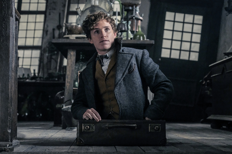 Fantastic beasts: the crimes of grindelwald' reveals footage of the 'underwater mount' at newt's home, the zoo, as unfriending.